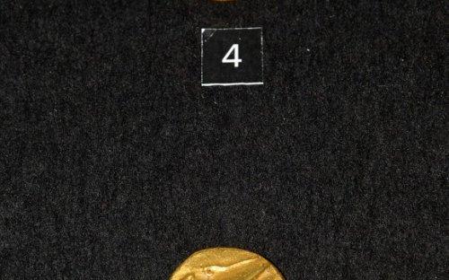 Nejstarší bójské ražby (cca 300–250 př. Kr.), zlatý statér typu Niké. Foto P. Kacl